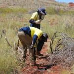 natural-area-pilbara-trap 1000 x 1000