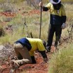 natural-area-pilbara-trap  21000 x 1000