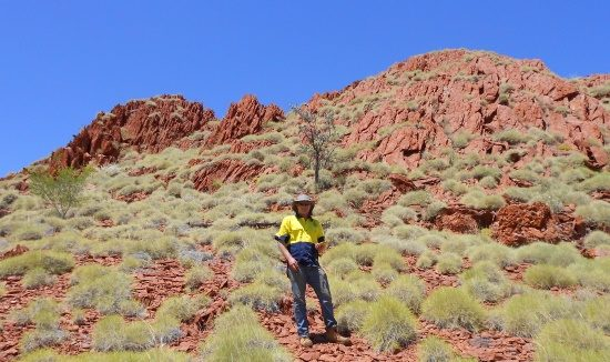 pilbara-site-assessment-615-x-326