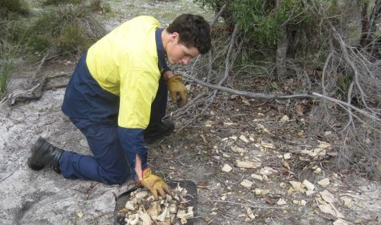 waste-removal-bushland-clean-615-x-326